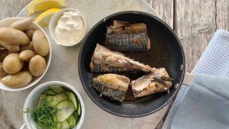 Stekt makrell med agurksalat og nypoteter