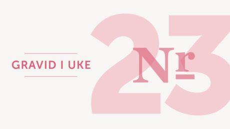 gravid uke 23