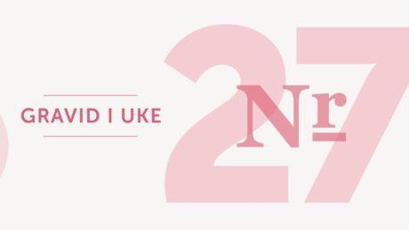 gravid uke 27