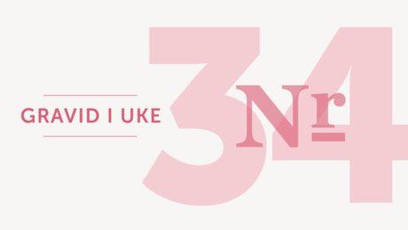 gravid uke 34